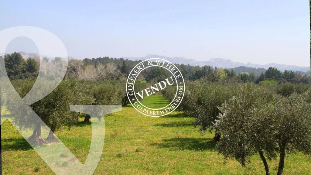 Sale Plot of land Maussane-les-Alpilles