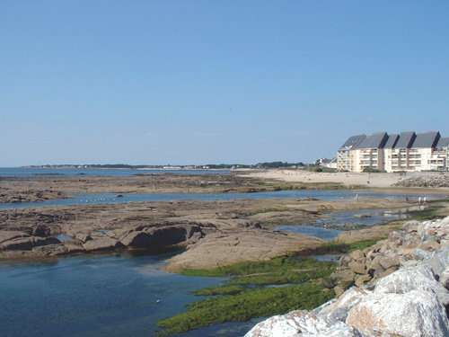 APPARTEMENT DIRECT SUR MER