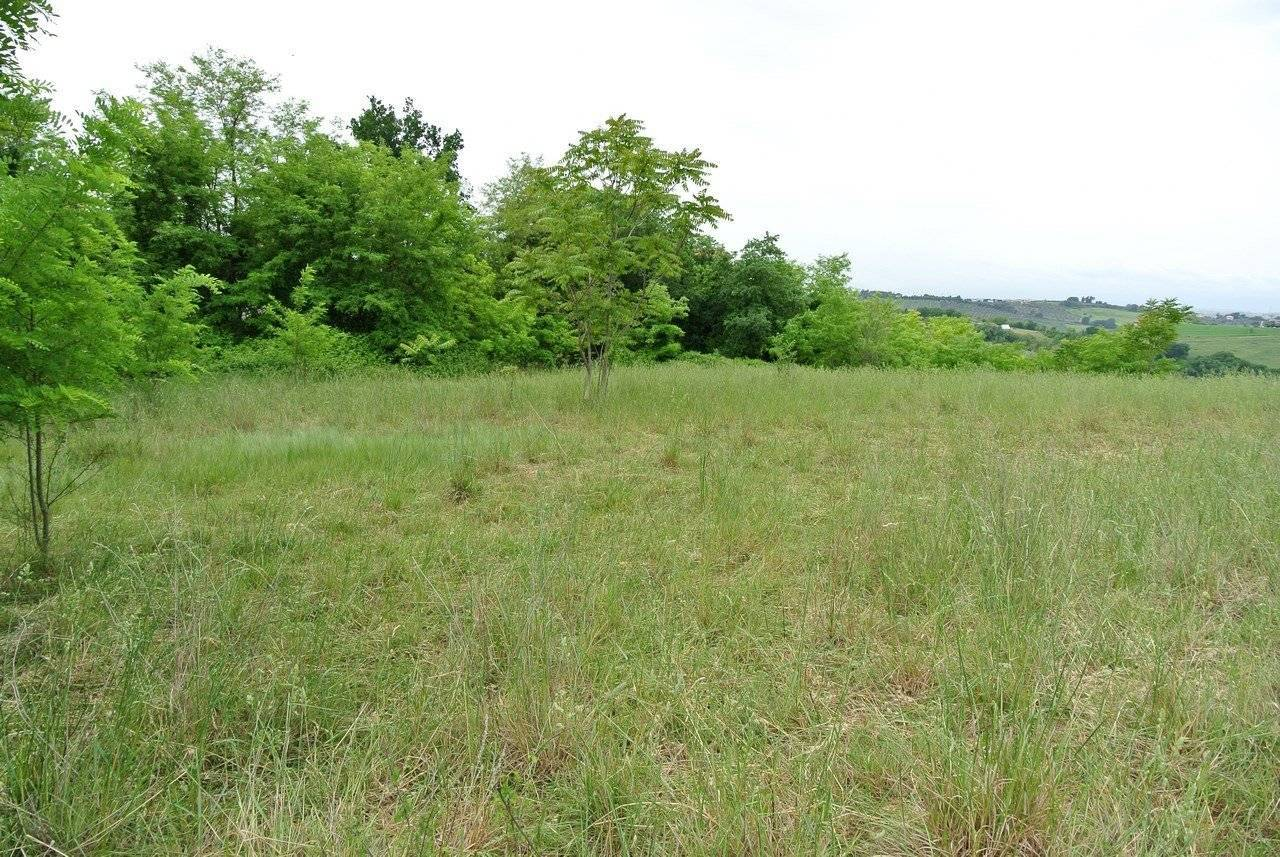 Sale Plot of land Spoltore