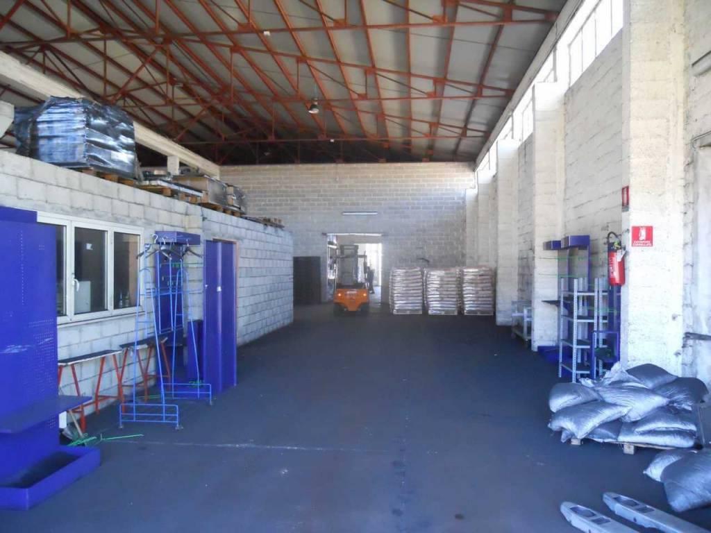 Rental Warehouse Silvi