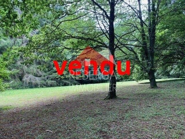 Sale Plot of land Saint-Amans-Valtoret