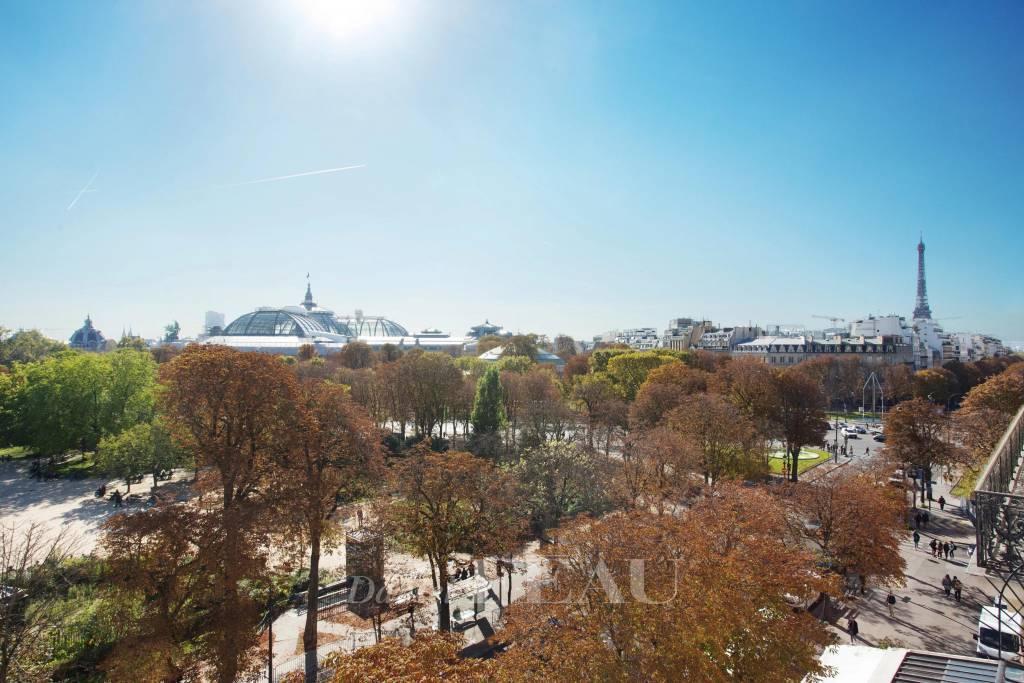 Vue sur le Grand Palais, les jardins des Champs Elysées et la Tour Eiffel