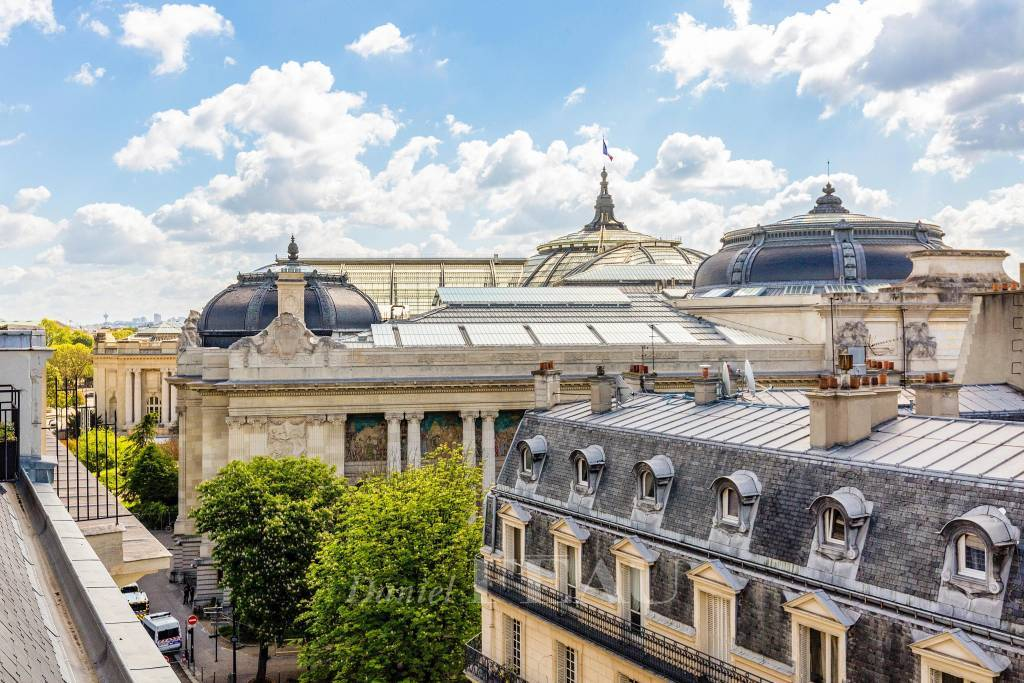 View on the dome of the Grand Palais