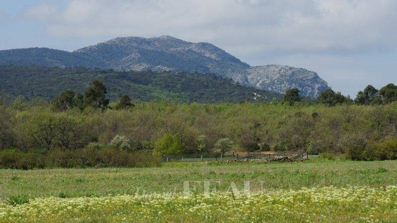 Aix en Provence countryside - A 170 hectare hunting estate