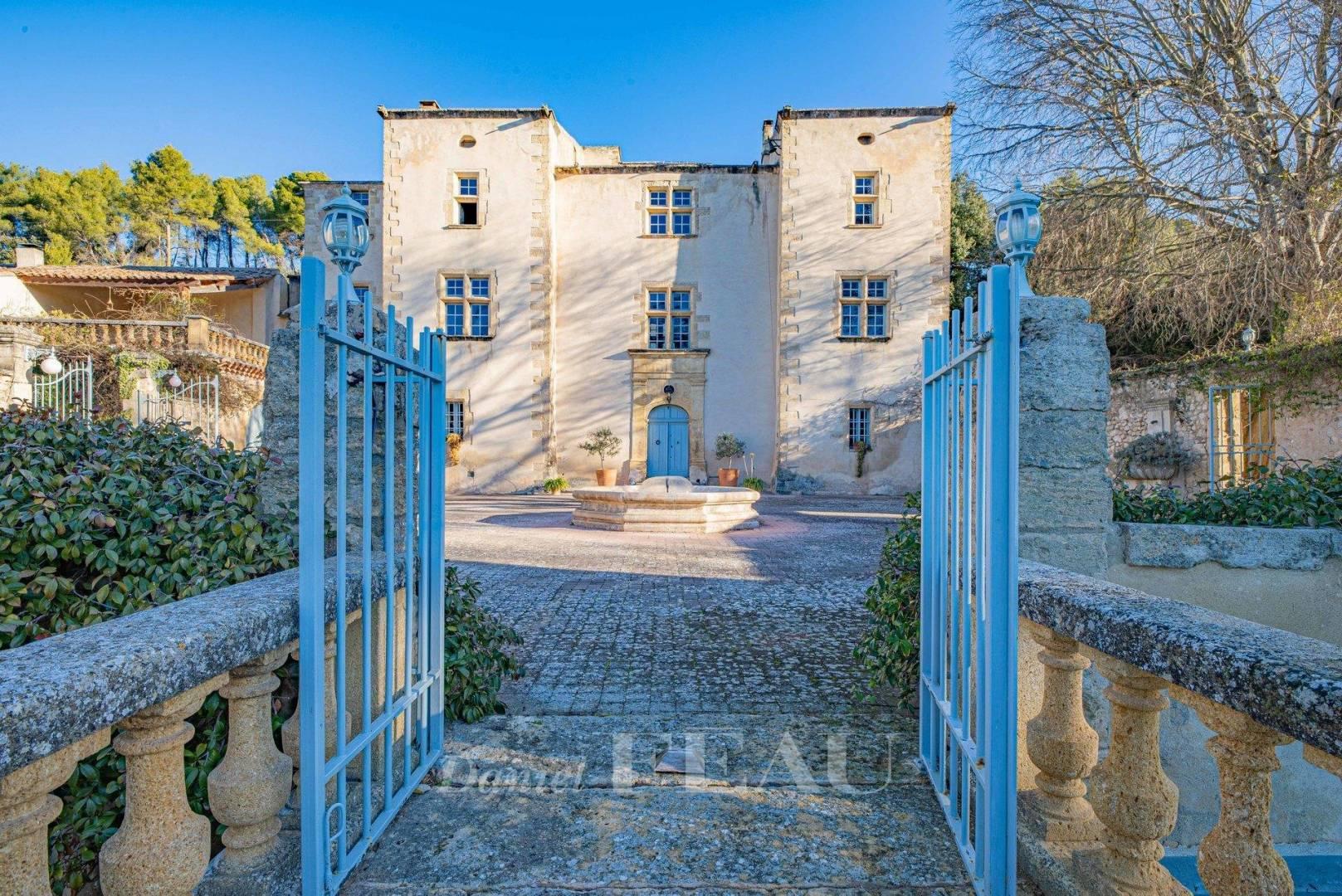 Vente Château Pertuis