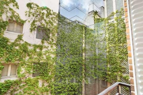 Mur végétal de la cour intérieure