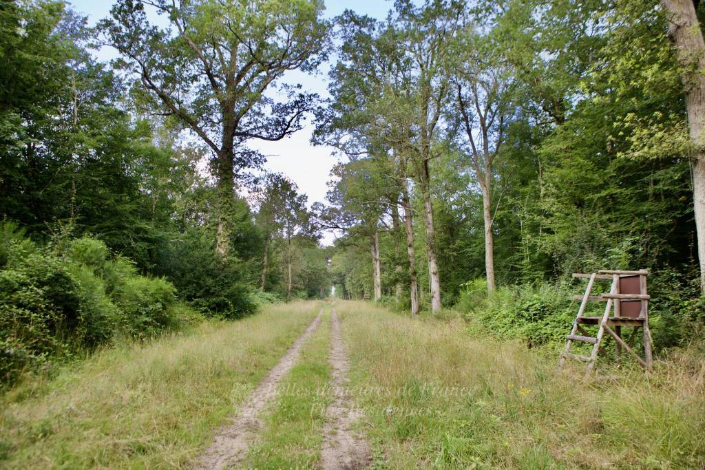 A superb 221-hectare hunting estate