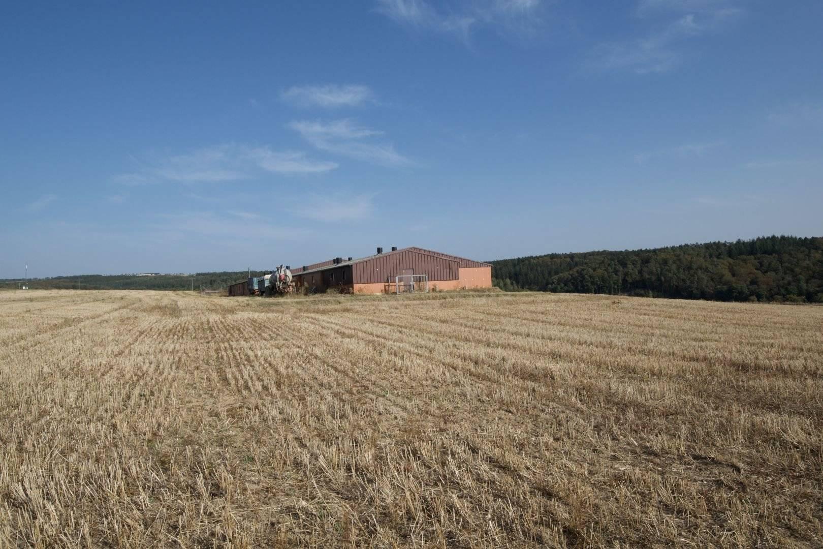 Verkauf Bauernhof Buschrodt