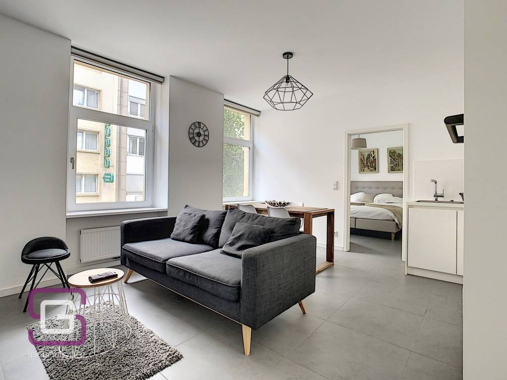 Furnished one bedroom apartment for short term rent in Luxembourg Station
