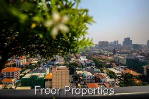 Rental Apartment Daun Penh Chakto Mukh
