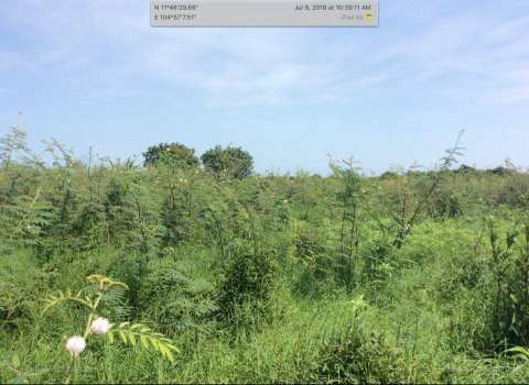 Sale Plot of land Mukh Kampul