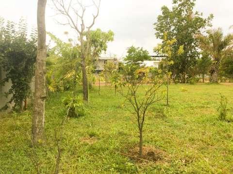 Rental Villa Siem Reap