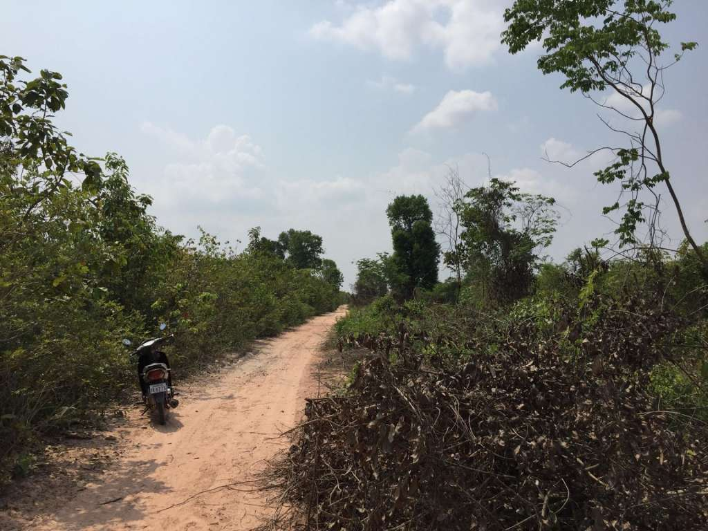 9 Hectares land farm at Svay Chek  Commune Angkor Thom District