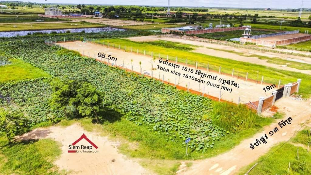 出售 土地情节 Siem Reap Svay Dankum