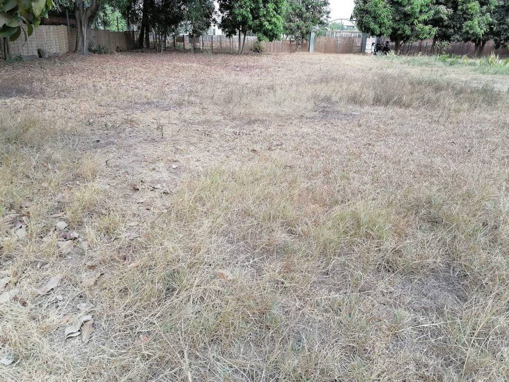 Land for sale at Trapeang Treng village Sangkat Salakemreuk $250/m2