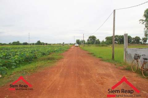 Sale Plot of land Siem Reap