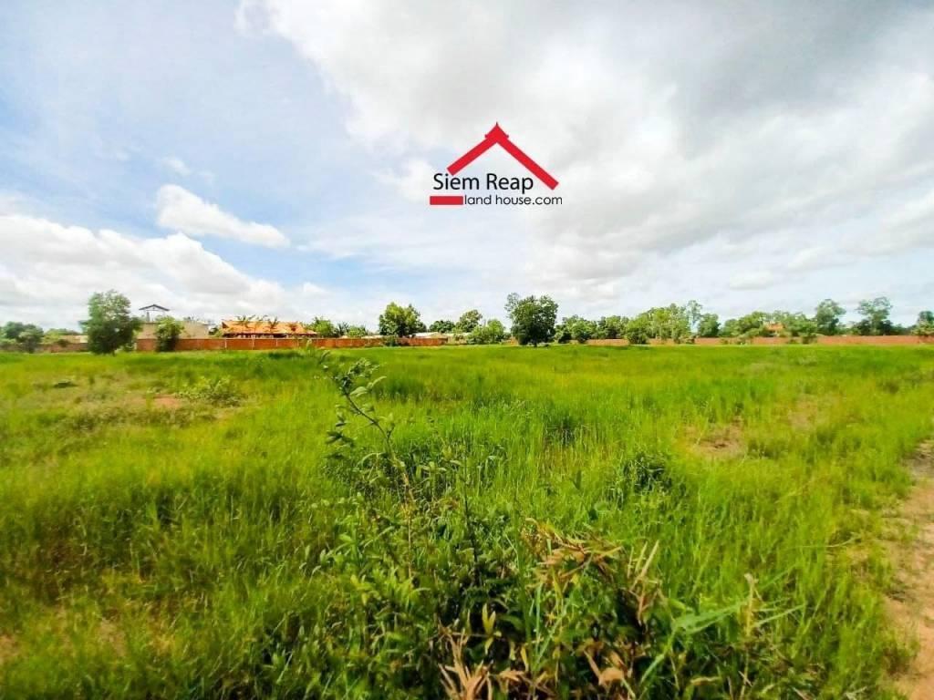 ដីលក់/Land on sale $90/m2