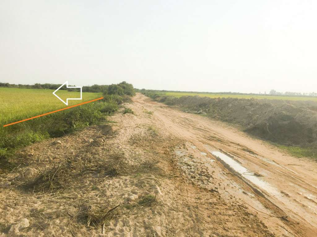 10 and 30 Hectares at Sra Gne and Sangkat Samnoor for sell