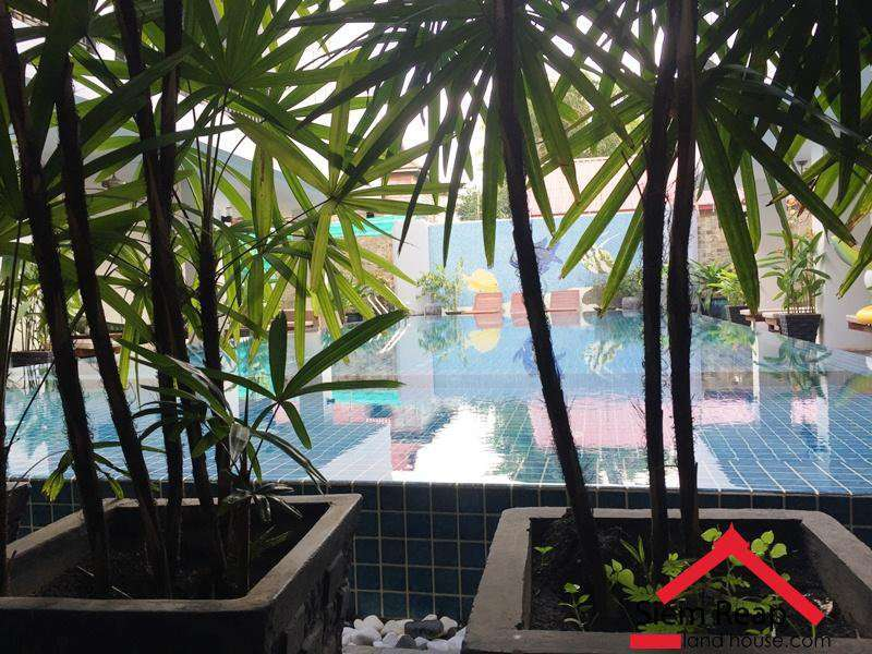 2 Bedrooms Apartment With Pool In Siem Reap Near To River $700 Per Month ID AP-102