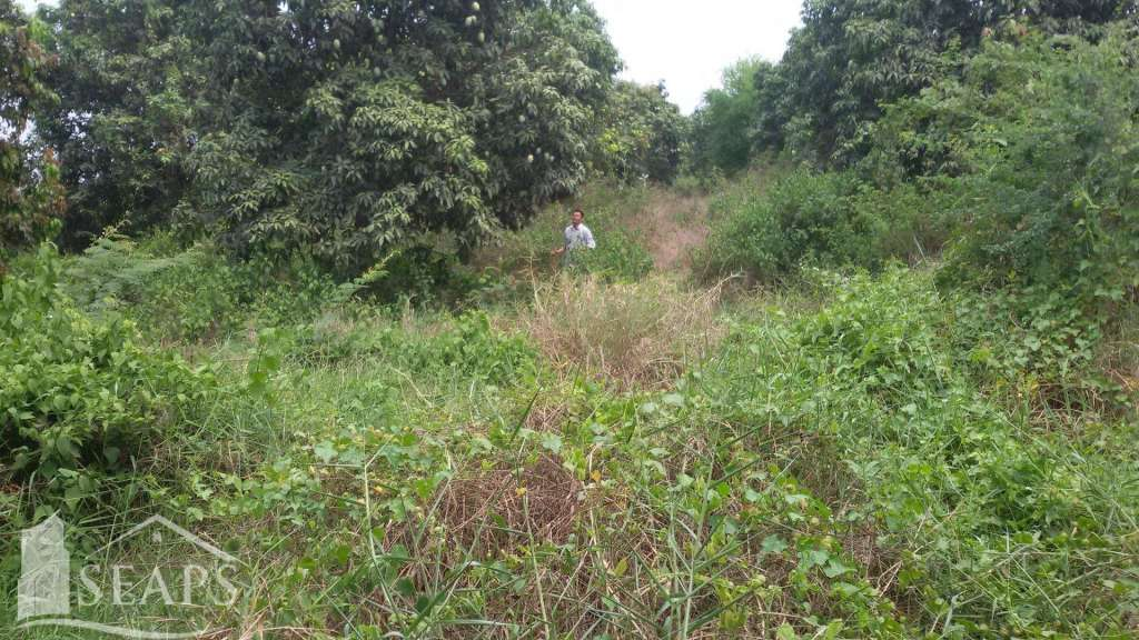LAND FOR SALE IN PREK HO - KANDAL