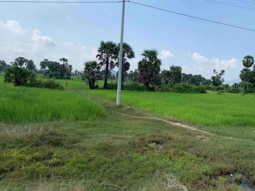 Land For Sale - Angk Snuol , Kandal Province