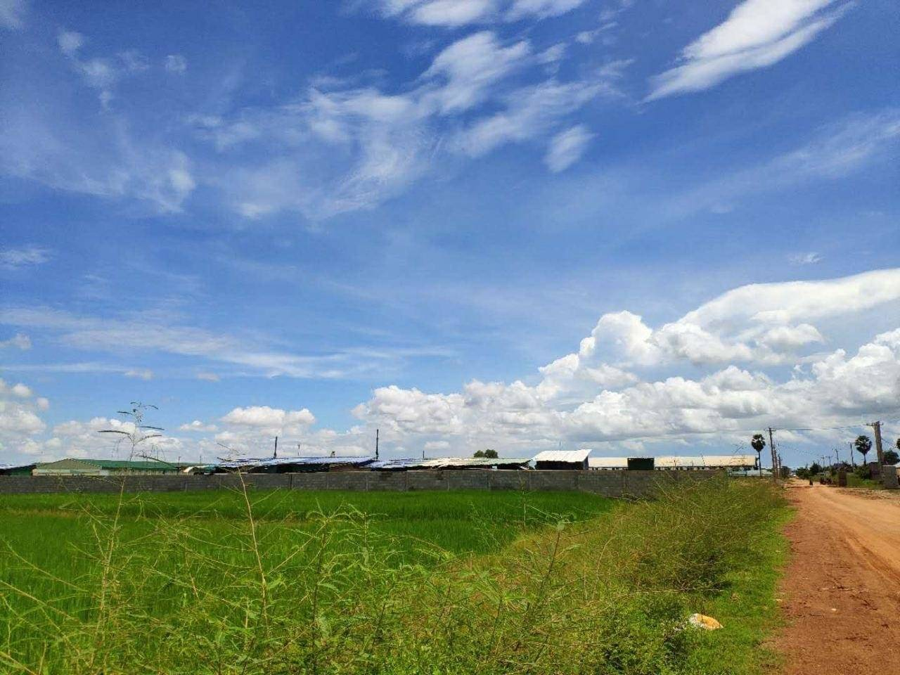 Sale Commercial land Samraong Tong