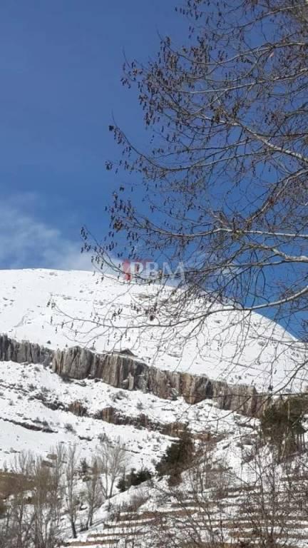 Location Chalet Faraya