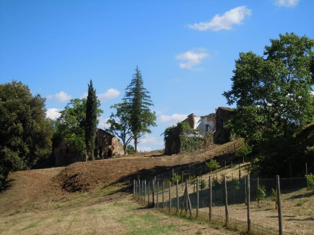 Sale Ruin Figline e Incisa Valdarno