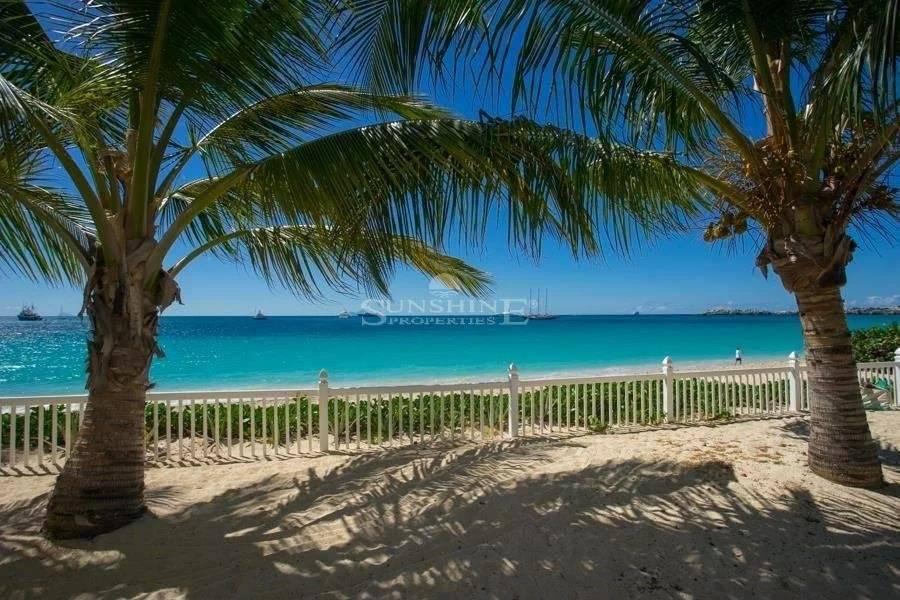 Palm Beach Tropical paradise