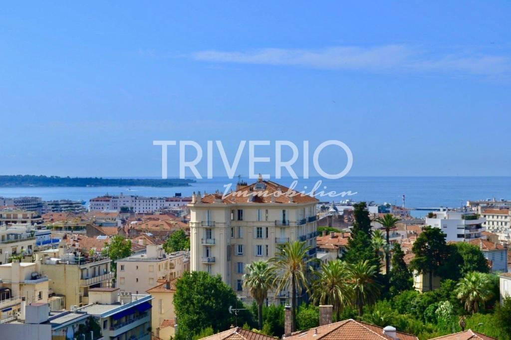 Sale Apartment Cannes Petit Juas