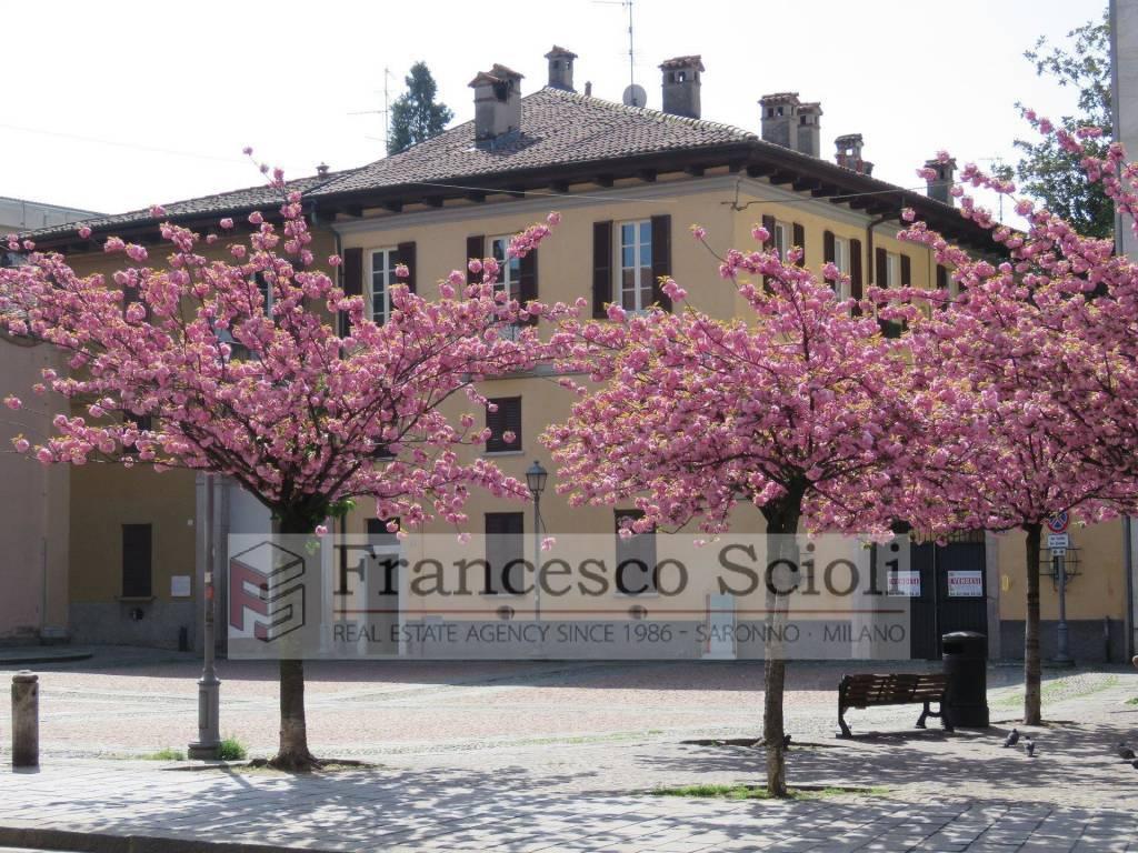 Saronno Piazza S.Francesco