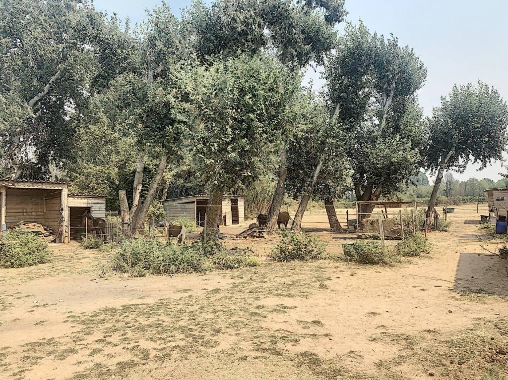Belle Propriété  équestre, en Provence Verte