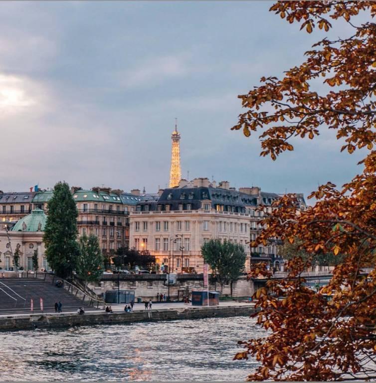Paris 8éme arrondissement - Parc Monceau - Appartement - Location - 1 Chambre - 55,69 m2